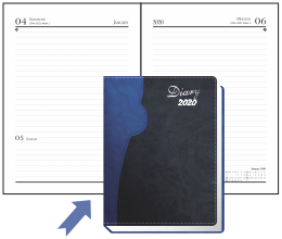 Diary Inside View